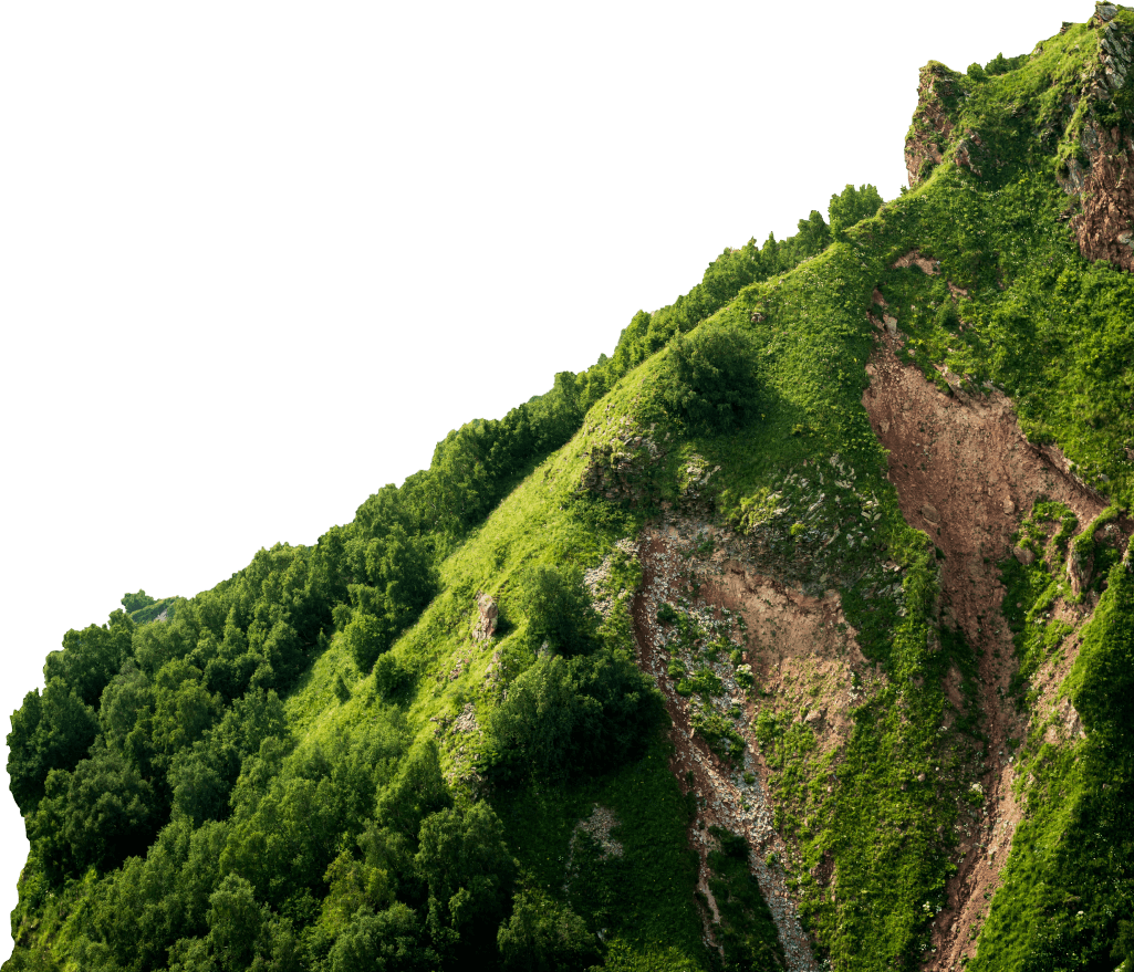 montana-der